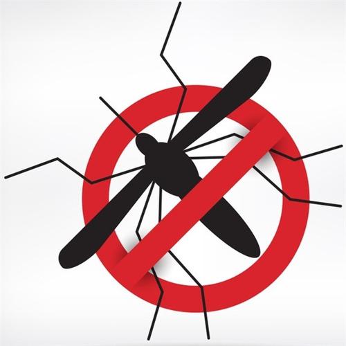 kit 50 mosquiteiro para bebe conforto mosquitos pernilongos