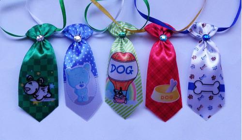 kit acessórios pets -cães, pet shop, banho e tosa