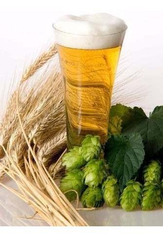 kit aprende hacer elaborar cerveza casa artesanal ecologica