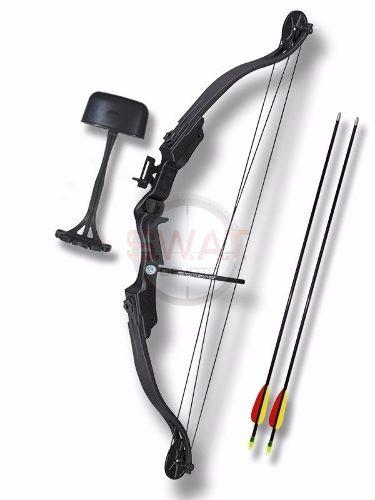 ff201a724 Kit Arco Compuesto Profesional 29 Lb + Flechas + Varios -   4.438