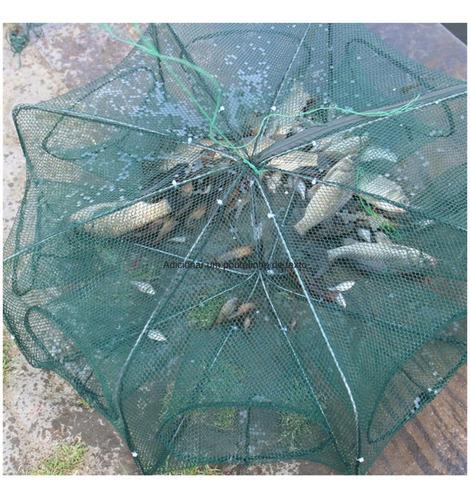 kit armadilha  pega peixe 8 entra galvaniza 3 peças + brinde