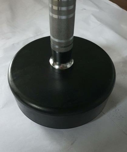kit barra montada w 10 a 30kg (5 em 5kg) - sem suporte