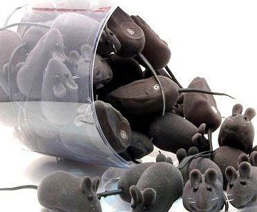 kit c/ 6 brinquedos ratinho real de veludo em vinil c/ apito