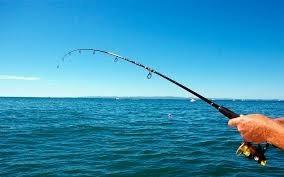 kit caña de pescar de 2 metros, plegable a 45cm + carrete