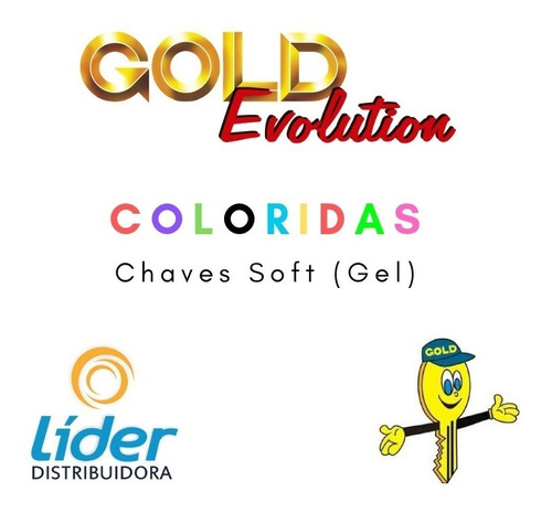 kit chave virgem gold yale chaveiro 110 unidades coloridas