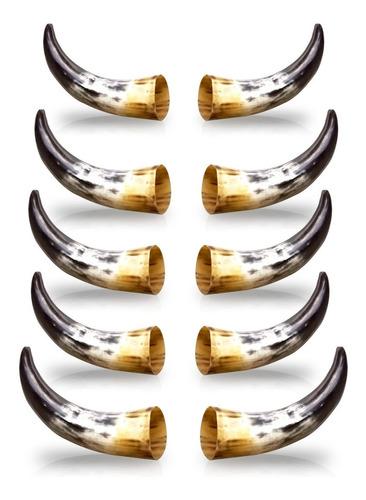 kit com 10 chifres de boi polidos mais 2 chifres de búfalo
