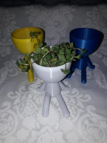 kit com 5 vasos decorativos para plantas suculentas e cáctos