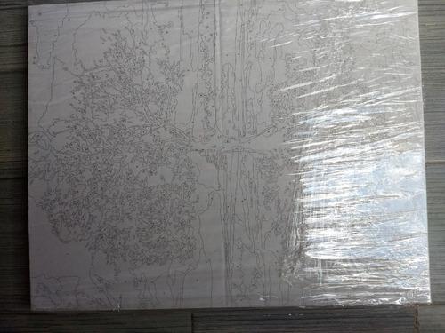 kit completo bastidor lienzo pintura pinceles guia numeros