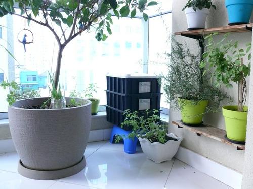 kit composteira doméstica / minhocário p + minhocas - 15l