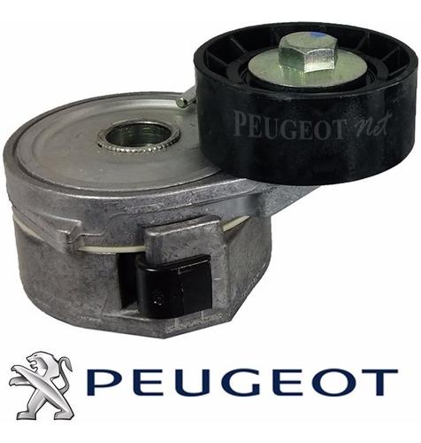 kit correa + tensores polyv original p / peugeot 206 1.9 d