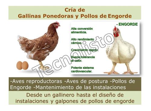 kit cría gallinas ponedoras y pollos + sistema excel control