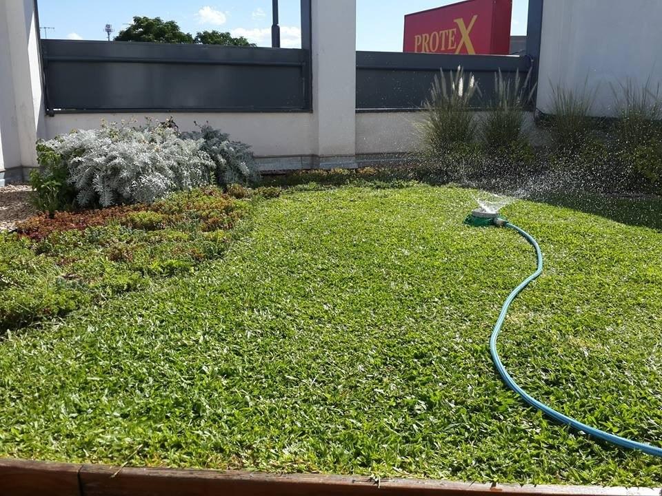 Kit Cubiertas Verdes Techos Verdes Terrazas Verdes Por M2