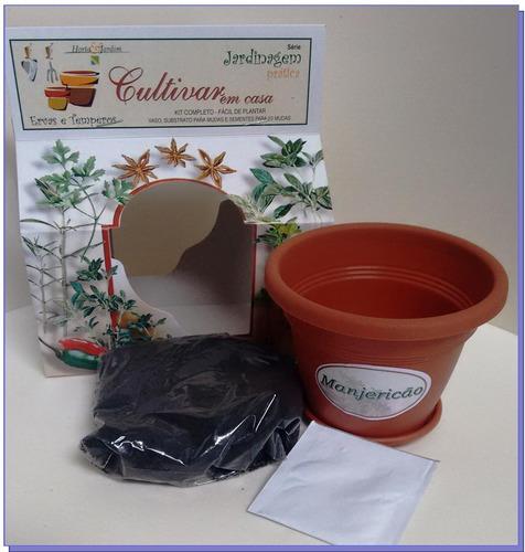 kit cultivar manjericão - combo 10 un