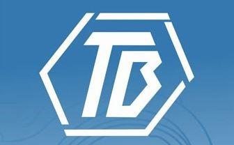 kit de bujes tren delantero x4 piezas tb - renault twingo
