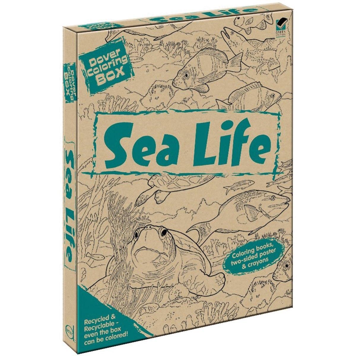 Kit De Caja De Colorear Dover Sea Life ... - $ 134.674 en Mercado Libre