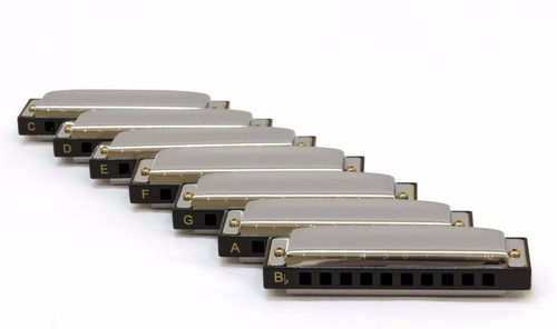 kit de gaitas hohner blues harmonica - revenda autorizada