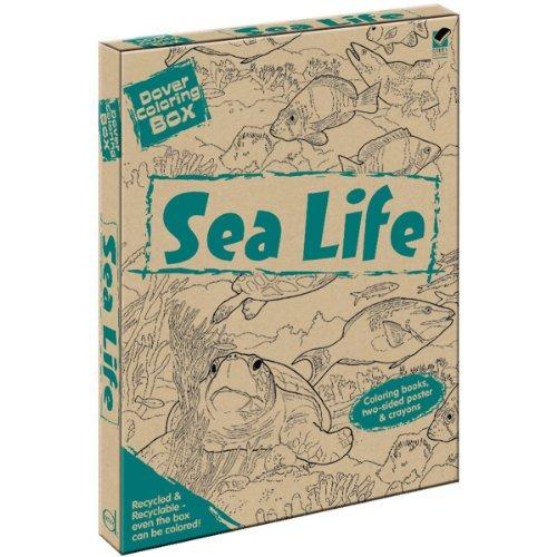 Kit De Mar Dover Vida Para Colorear Caja ! - $ 194.235 en Mercado Libre