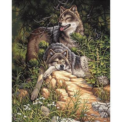 Kit De Pintura Por Número De Lobos Salvajes Y Libres De Di