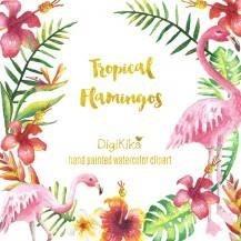 Kit Digital Flamingo Animais Tropicais E Abacaxi R 1000 Em