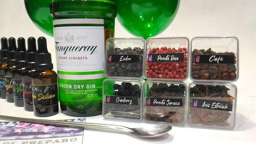 kit gin tanqueray taça especiarias xaropes bailarina dosador