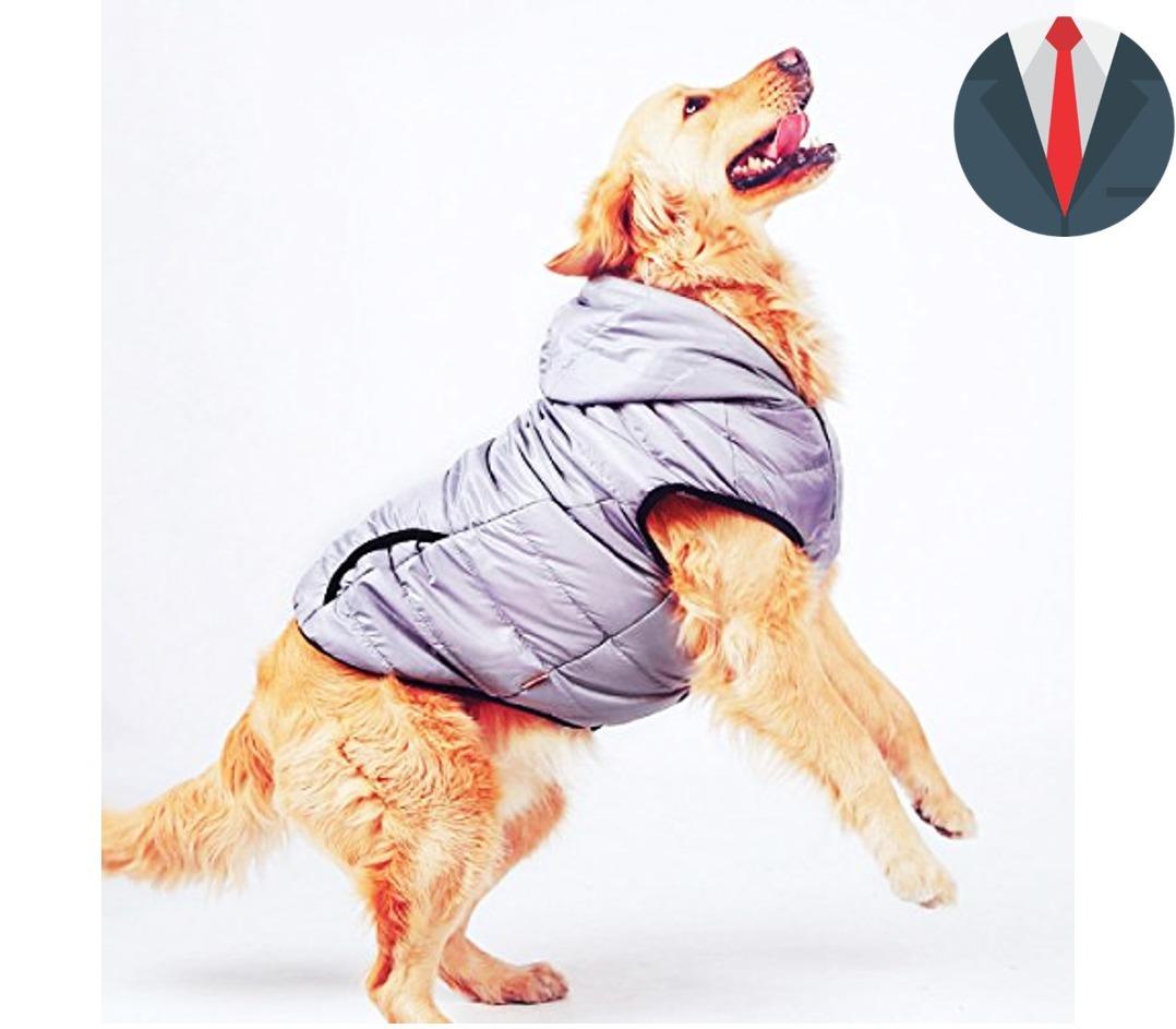 Kit Imprimible De Patrones De Ropa Para Perros Y Gato Moldes ...