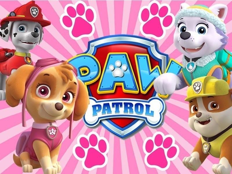 Kit Imprimible Paw Patrol Patrulla Canina Nina Sky 1 990 En