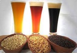 kit insumos ipa 20 lts cerveza artesanal bierplatz