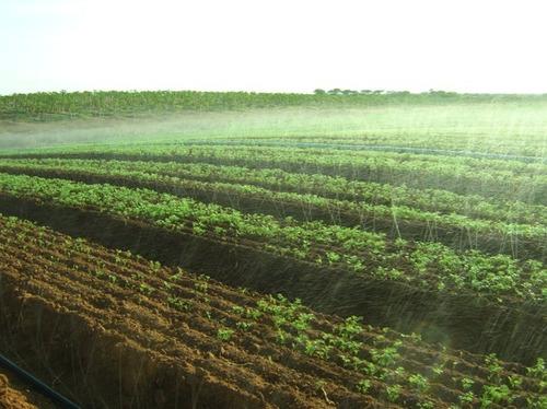 kit jardim mangueira santeno microperfurada 15m irrigação