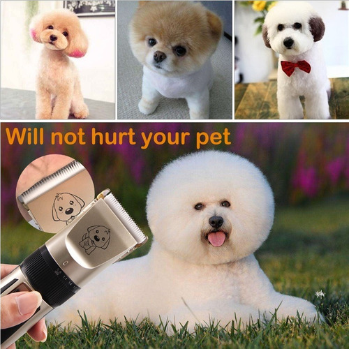 kit, maquina para cortar pelo, mascotas