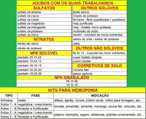 kit nutrientes solução hidroponia 500 litros frutos tipo 2b