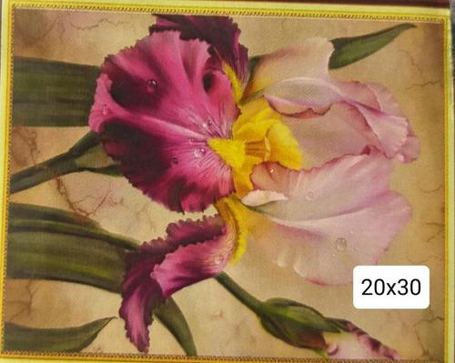kit pintura 5 d- diamond painting 20x30