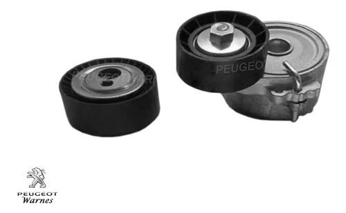 kit poly v correa + tensores original peugeot 206 1.9 diesel