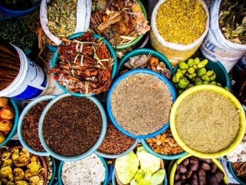 kit produto 300 nutrientes naturais plantas ervas natura bio