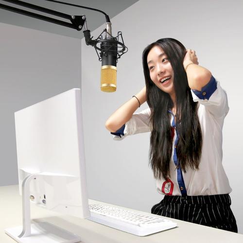 kit profesional neewer nw-800 microfono + phantom power xlr