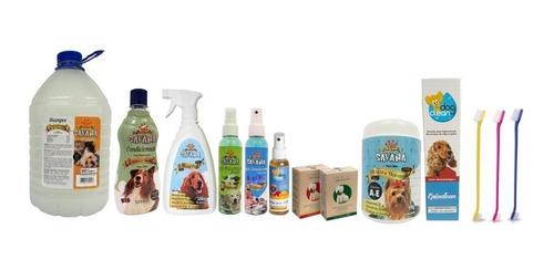 kit secador soprador banho e tosa pet shop profissional