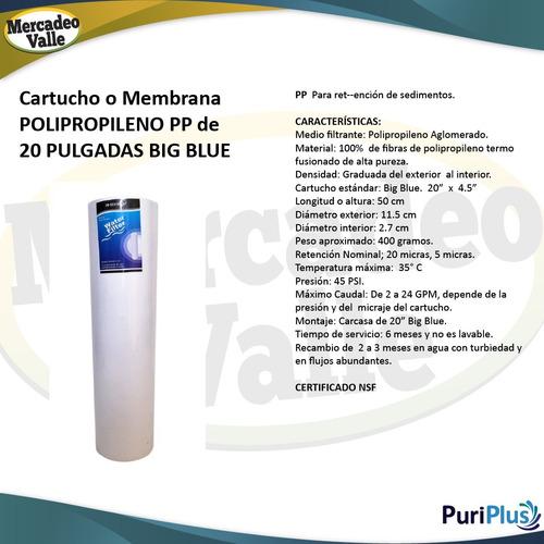 kit x2 membrana 20 pulgadas pp plisada big blue filtro agua