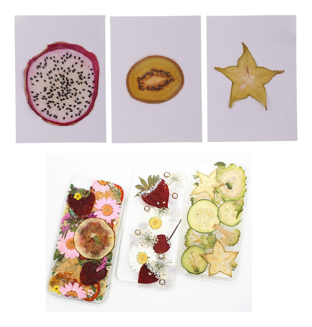 A Fruta Carambola Serve Para Que kiwi/pitaya/carambola seco prensado frutas fatias planta her