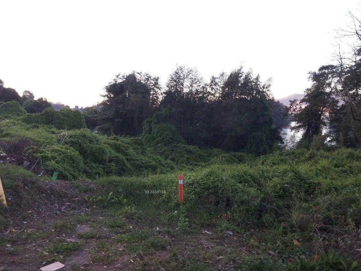 km 3,5 camino a santa juana