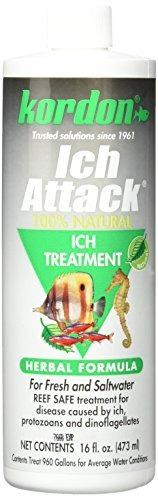 kordon  # % natural and herbal formula ich attack-ich treat