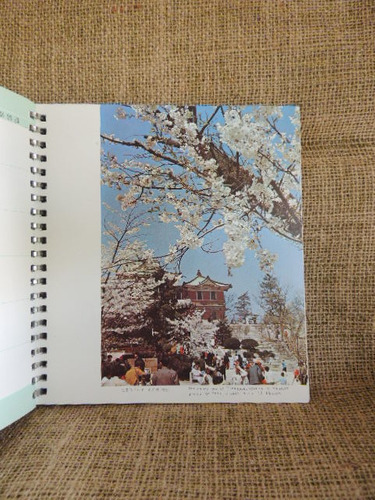 korea photo diary 1973 - para quadros, artesanato, etc.