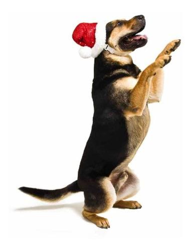 kyjen outward hound plush puppies led diadema