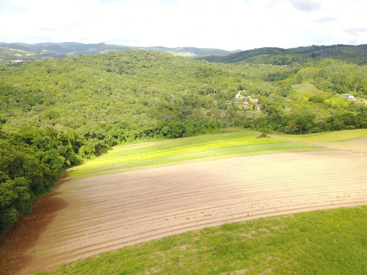 l. compre terrenos bem localizados em ibiúna