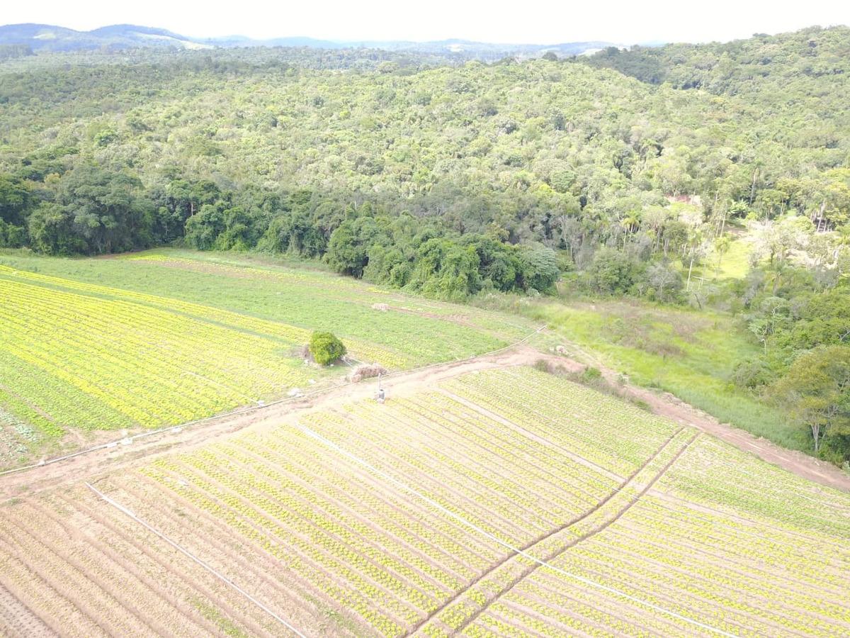 l. compre terrenos com preços exclusivos, ibiúna 33 mil