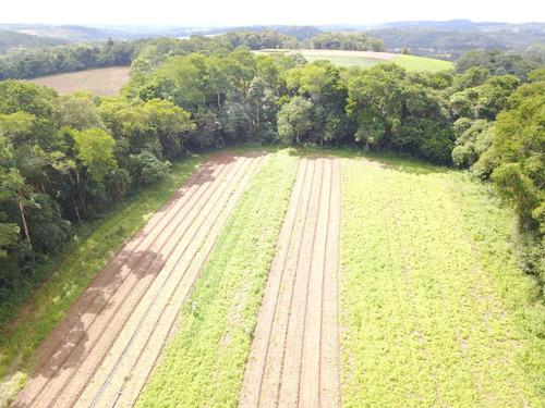 l. conheça lotes em ibiúna, 600 m² por 20000. invista