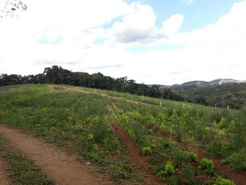 l. ibiúna, terrenos para chácara