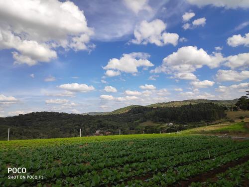 l. linda vista, terrenos 12 km do centro de ibiúna