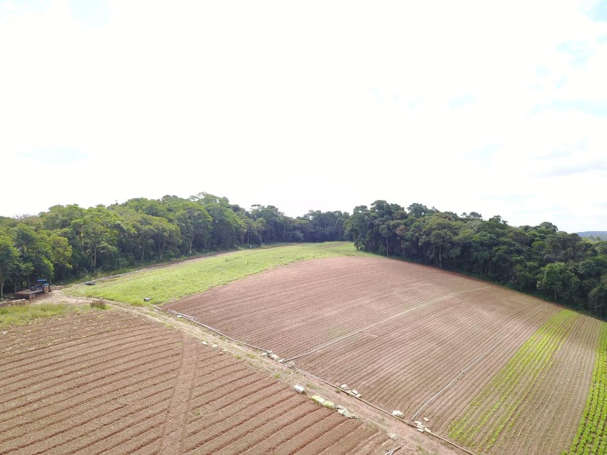 l. lotes delimitados, área rural de ibiúna, 600m2, 20 mil