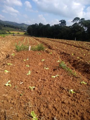 l. lotes delimitados, área rural de ibiúna