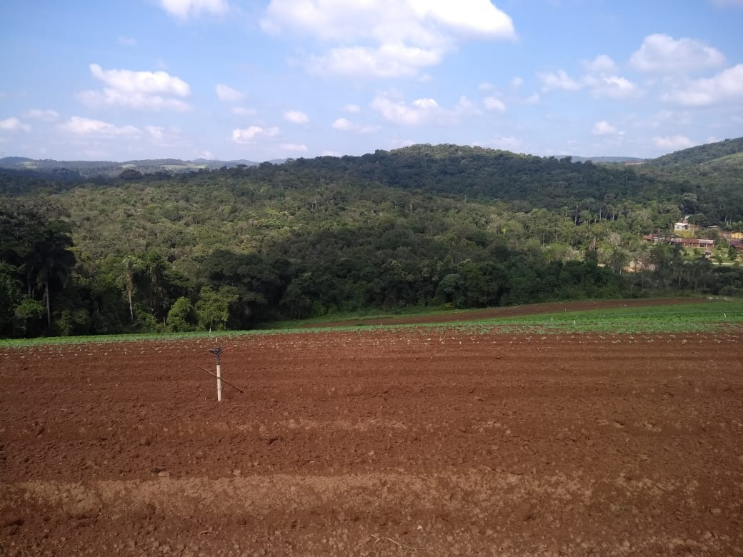 l. lotes em ibiúna, 1200 m² por 33000