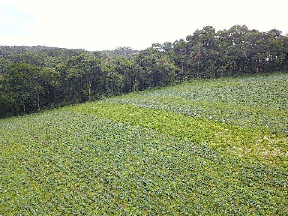 l. lotes em ibiúna, condomínio fechado 1200m2